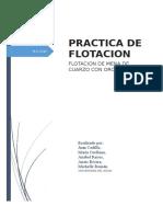 Informe Practica Flotacion