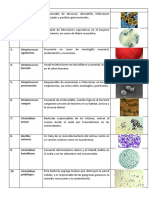 Ejemplos de bacterias Gram positivas.docx