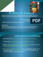1 Principales Sectores Economicos de Espana El Olivo