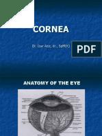 Corneal Ulcer dr.IZ.ppt