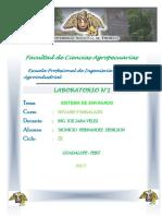 Informe n 1 de Envases y Embalajes Dionicio