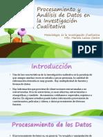 Procesamiento y Analisis Datos Cualitativos