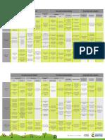 Guía Rápida Escala de Valoración ICBF