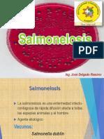 3. Salmonelosis.pdf