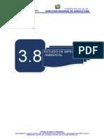 3.8-INFORME-DE-IMPACTO-AMBIENTAL-CAJATAMBO.doc
