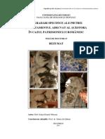 02_12_58_272011rezumat_teza_doctorat_iulian_olteanu2011.pdf