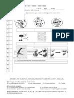54172_Doc1-pDIVISION.CEL. (1).doc