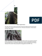 Hutan Simpan Pasir Raja