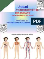 Sistemas en La Nutrición Octavo