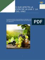 1. Factores Que Influyen en Calidad Del Vino