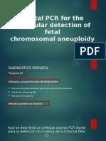 Digital PCR for the Molecular Detection of Fetal