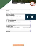 CONTAMINACION AMBIENTAL (RELAVES).docx