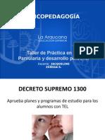 4 DECRETO 1300