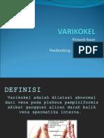 230774236-varikokel-ppt