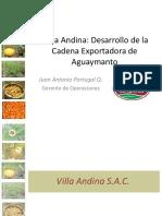 Cadena Exportadora Aguaymanto Juan Portugal Villa Andina