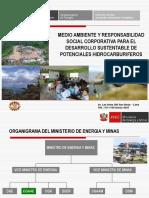 Direccion General de Asuntos Ambientales Enegeticos (1)