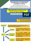 Diversificación Curricular.pptx