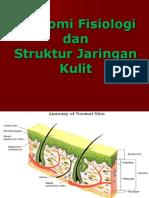 anatomi fisiologi dan Struktur Kulit.ppt