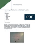 CONEXIONADO MIXTO.docx