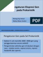 Pengaturan Gen Pada Prokariotik