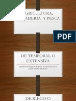 AGRICULTURA, GANADERÍA  Y PESCA.pptx