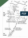 Socio-technichal Landscape - Kopie.pdf