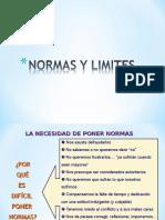 Normas y Limites Ppt