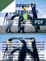 JEJARING P2 TUBERKULOSIS