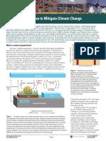 Carbon Dioxide Sequestration for Global Warming Mitigation