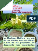 Moringa_Oleifera_Planta_versatil_Proyect (1).pdf