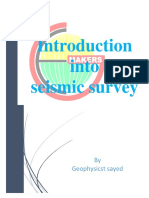Introduction Into Seismic Survey