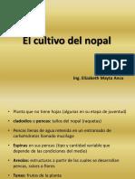 2 El cultivo del nopal.pdf