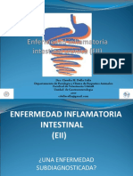 Presentacion_EII_cronica.ppt