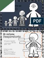 Como Funciona Mi Cuerpo PDF
