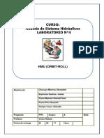 Informe HMU