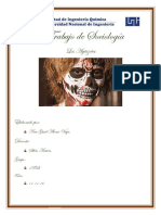 Trabajo de Sociología aguizotes.docx