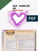 Curs 1 Patologia Vaselor Sanguine.