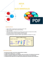 AGUA-Y-SALES-MINERALES.pptx