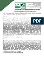 INTOXICACIÓN POR MICOTOXINAS EN POLLOS DE ENGORDE.pdf