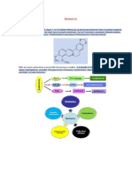 Berberina Inhibitor Ai Telomerazei