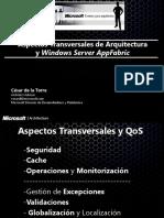 08_Aspectos_Transversales_y_AppFabric_18_05_13