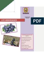 Mercado Arandano