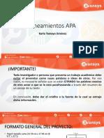 Lineamientos APA