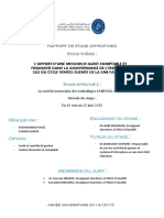 306364955-Rapport-Stage-Fantasia-AF.pdf