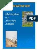 SISTEMAS DE PROD. CARNE.pdf