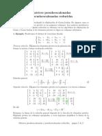 pseudoechelon_matrices_es.pdf