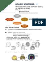 BIOLOGIA DEL DESARROLLO.zoología.docx
