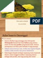 Bahan Ajar9 Arthropoda Kelas Insecta(Serangga)
