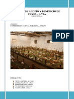 INVESTIGACIÓN Centro de Acopio y Beneficios de Cuyes en La Localidad de Anta Provinvia de Cusco