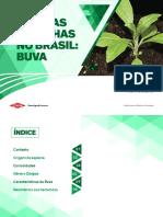 CONTROLE DE BUVA.pdf